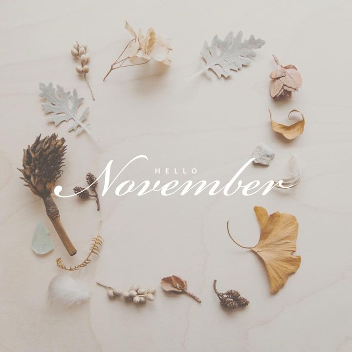Can you believe it's November??